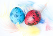 Colored Quail Eggs