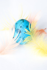 Colorful Easter Egg with Feathers