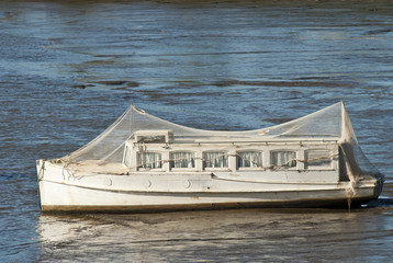 Seagull netting on old boat stranded in mud