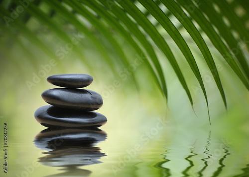 In de dag Bamboo Zen stones