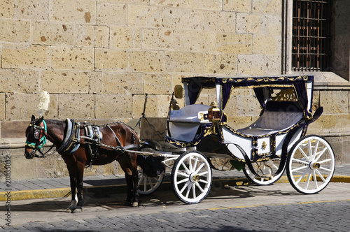 Horse drawn carriage in Guadalajara, Jalisco, Mexico