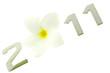 année nouvelle 2011, fleur frangipanier, fond blanc