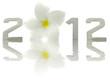 année nouvelle 2012, fleur frangipanier, fond blanc