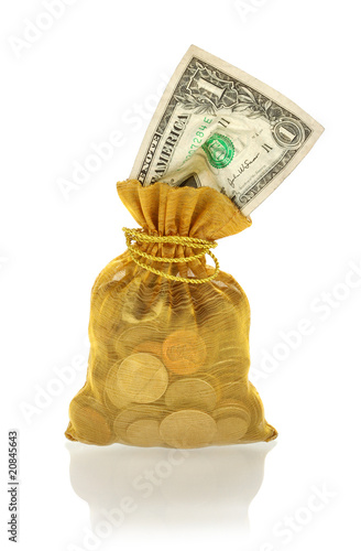 Gold Money Bag with One Dollar