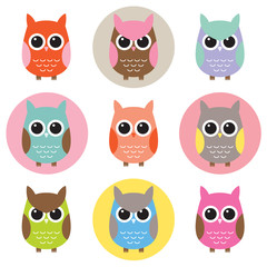 Colorful Owl Characters