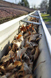 Home maintenance: Fall leaves in rain gutter. poster