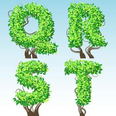 Tree alphabet symbols. Characters q-t