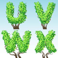 Tree alphabet symbols. Characters u-x