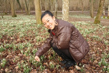 Asian girl pick Snowdrops