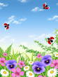 Spring garden with daisies, violets and ladybugs