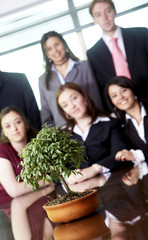 Business Office Team