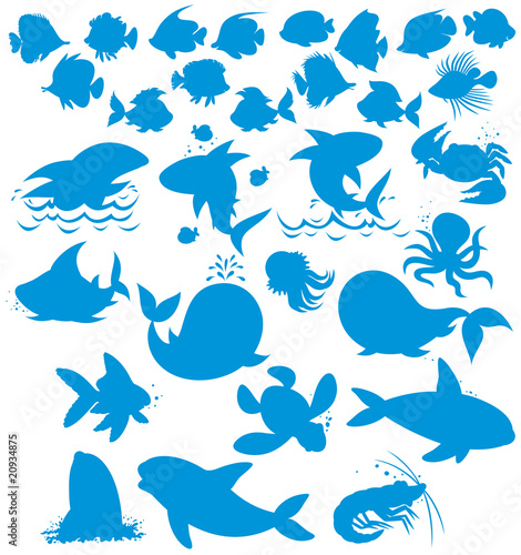 Silhouettes of sea animals