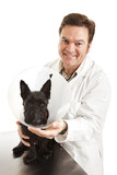 Vet with Dog in Protective Collar poster