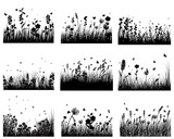 Fototapety meadow silhouettes