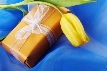 Yellow tulip and gift box