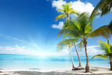 Fototapety Caribbean sea and coconut palms