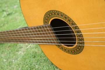 Part of the body of a guitar with green leaves as background