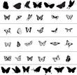 Butterfly Vector Collage 2