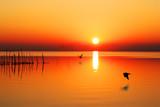 Fototapety sol en el mar