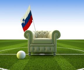 Slovenia soccer fun