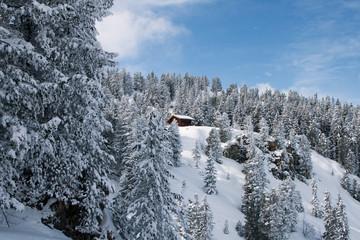 Penken, Mayrhofen