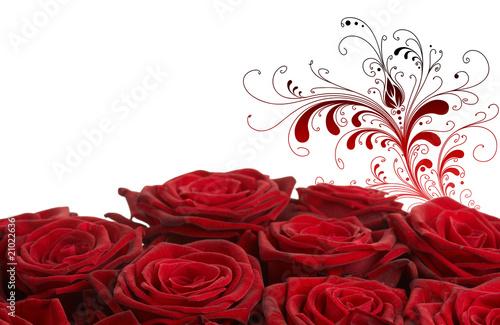 fototapete rosen rote rosen mit ornament. Black Bedroom Furniture Sets. Home Design Ideas