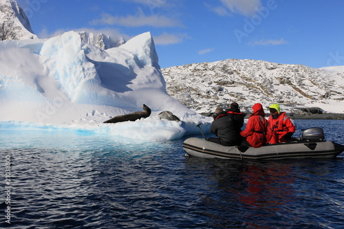 Fotobehang Antarctica People in Dinghy are very close to very dangerous leopard seals