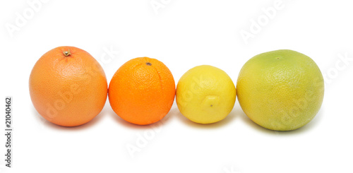 Group of citrus fruits, isolated on white