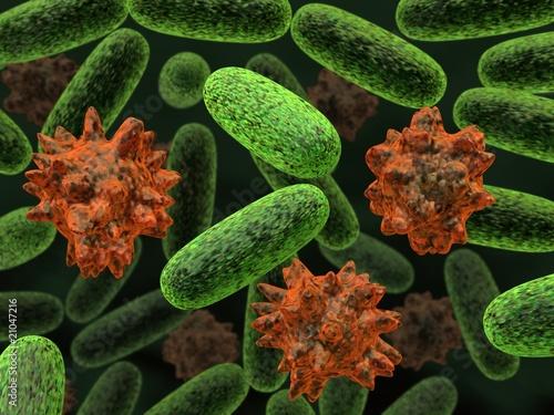 transformed bacteria - 21047216
