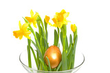 Yellow Daffodil flower with golden eater egg poster