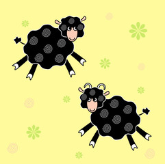 Sheeps black