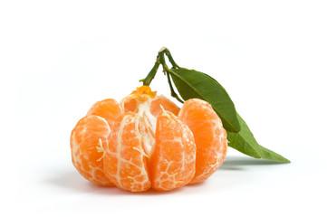 Clementina aperta