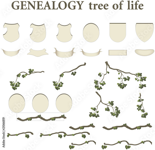 tree of life - genealogy - kit