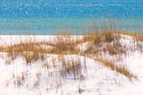 Pensacola sand dune