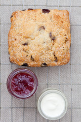 Fresh home baked scone with jam and clotted cream