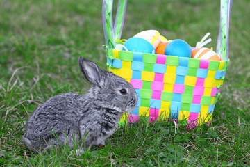 Small easter rabbit