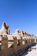 Ruin of the Karnak Temple Complex. Sphinx's. Luxor, Egypt
