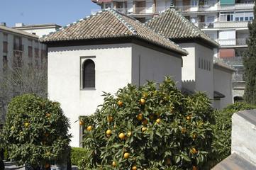 Alcázar del Genil en Granada 1