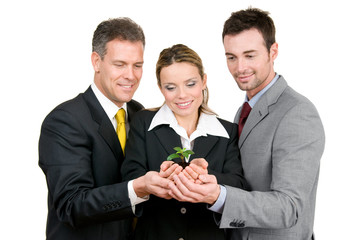 Green new growing business