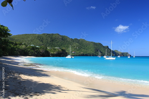 Fotobehang Centraal-Amerika Landen Tropical beach on Bequia Island, St. Vincent in the Caribbean