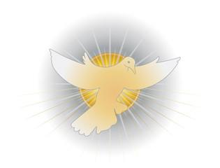 Simbolo dello Spirito Santo (colomba)