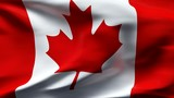 Creased canadian satin flag in wind with seams and wrinkle poster