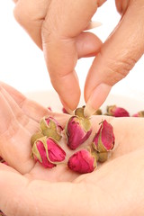 Rosebuds with hand