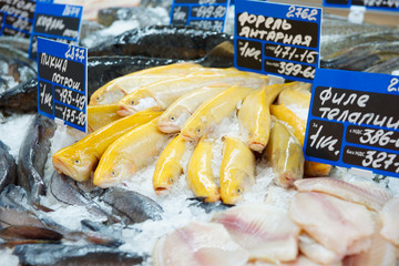 Yellow trout on fish market display