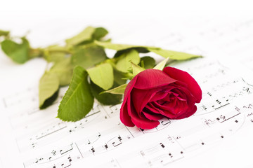 Musical score, and Rose