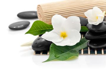 Composition zen avec fleur de frangipanier