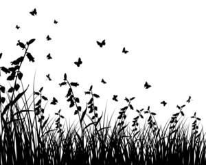 grass background
