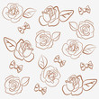 Bows`n`roses (contour)