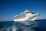 Cruise Ship in Caribbean Sea - 21156295