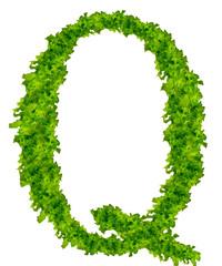 "Salad letter ""Q"""